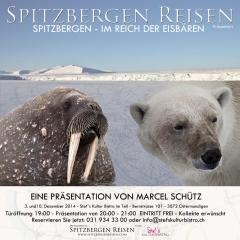 Im Reich der Eisbären - Spitzbergen Reisen